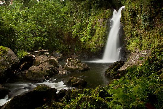 waterfallview